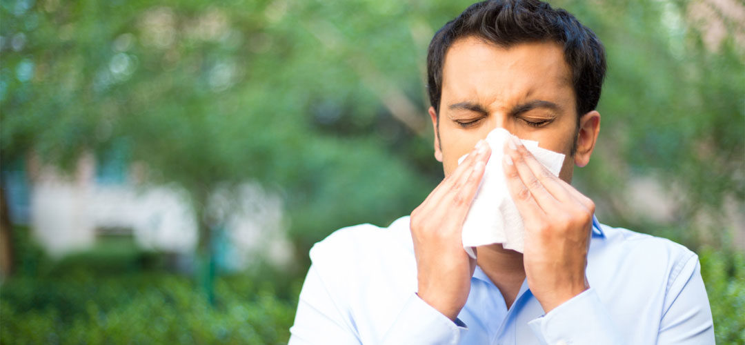 Spring allergies | Alergias de primavera