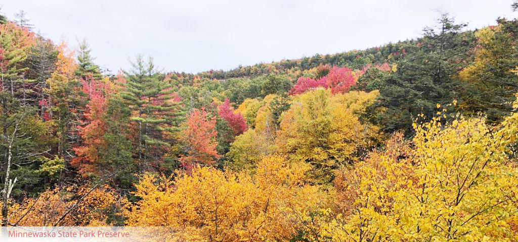 Fall foliage – Stunning spots in Hudson Valley