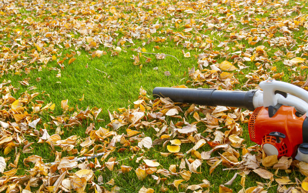 LARCHMONT GAS-POWERED LEAF BLOWERS
